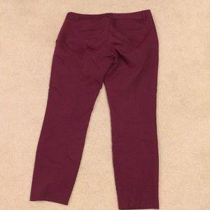 Maroon express columnist pants